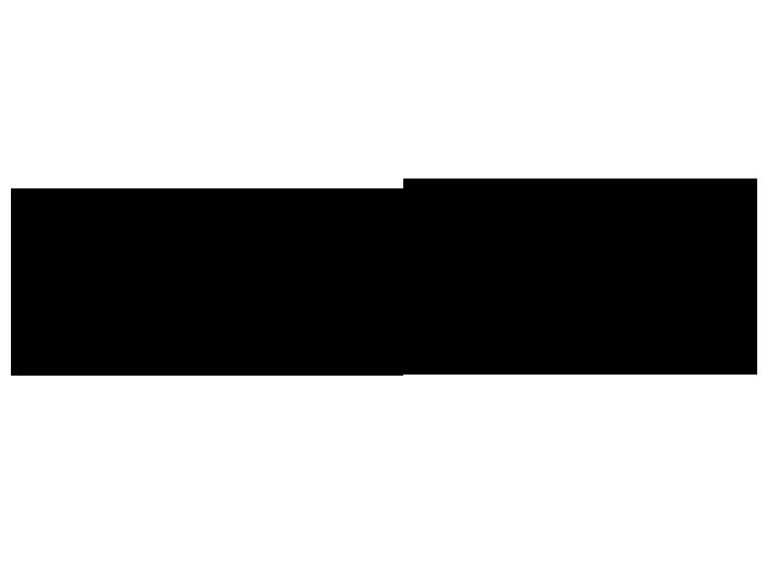 2564_4-wandtattoo-ornament-mit-lilien